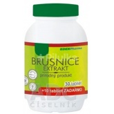 Brusnica extrakt 40ks